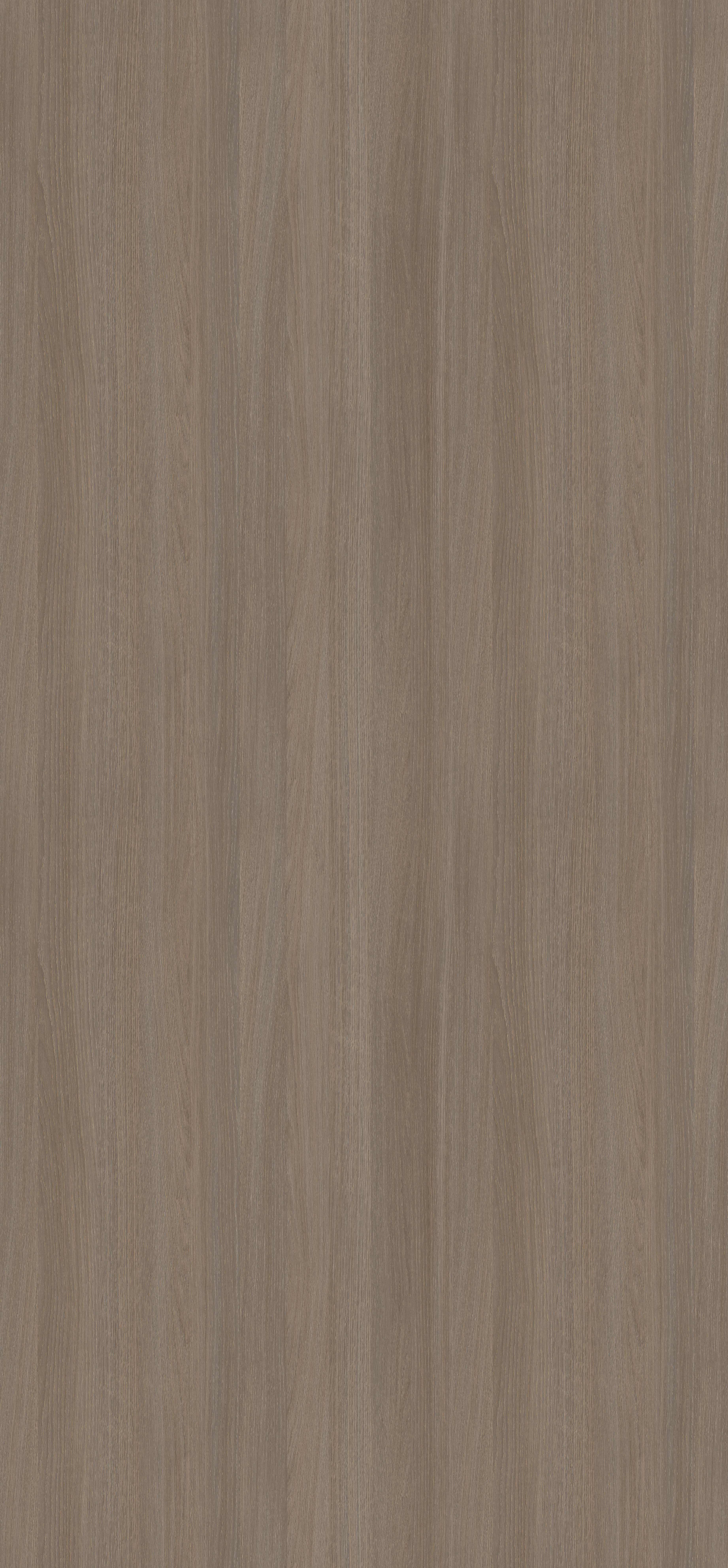 Stejar Cortina Gri H3353 ST11